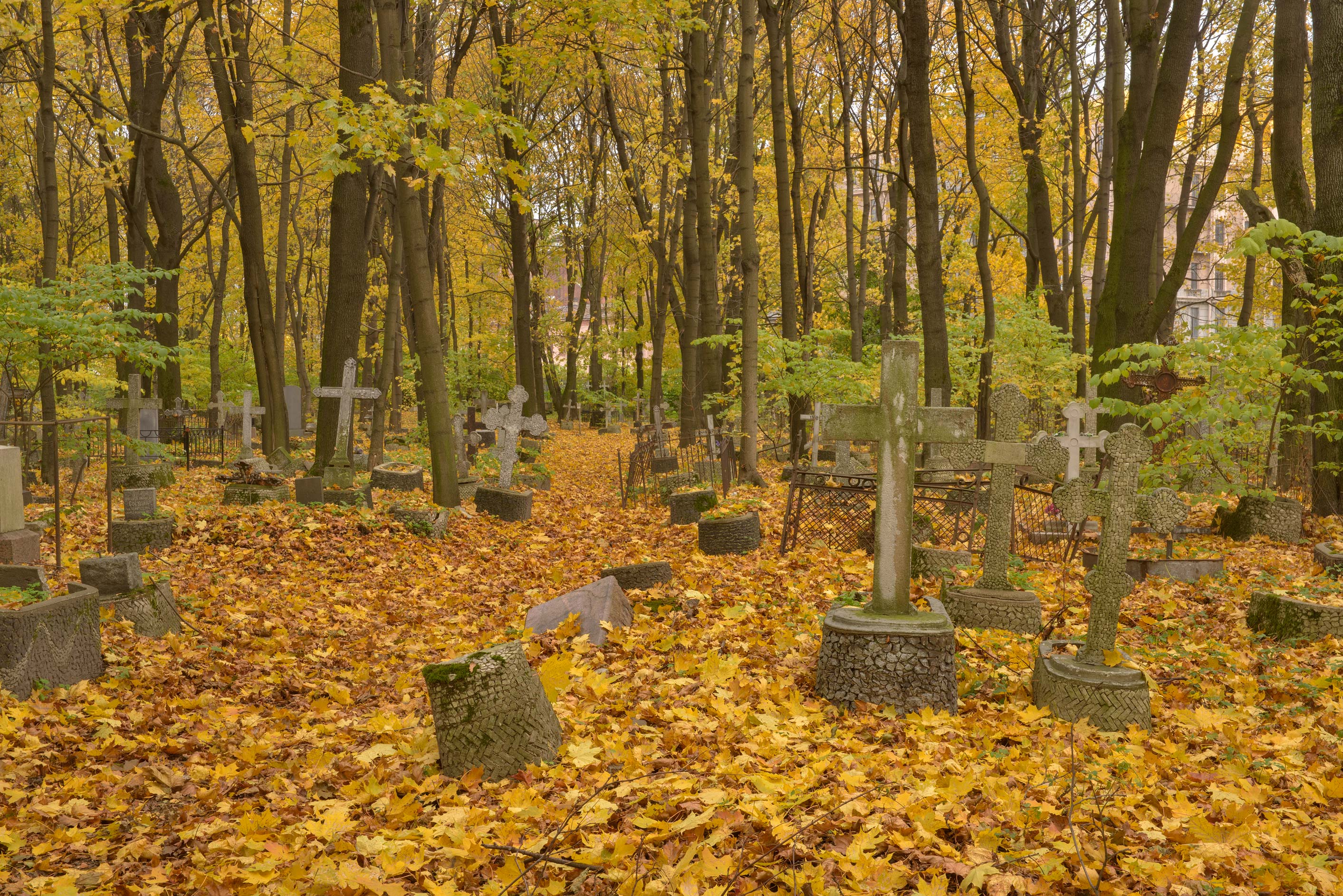 Tombs with crosses in Novodevichye Cemetery at Moskovskiy Prospect. St.Petersburg, Russia