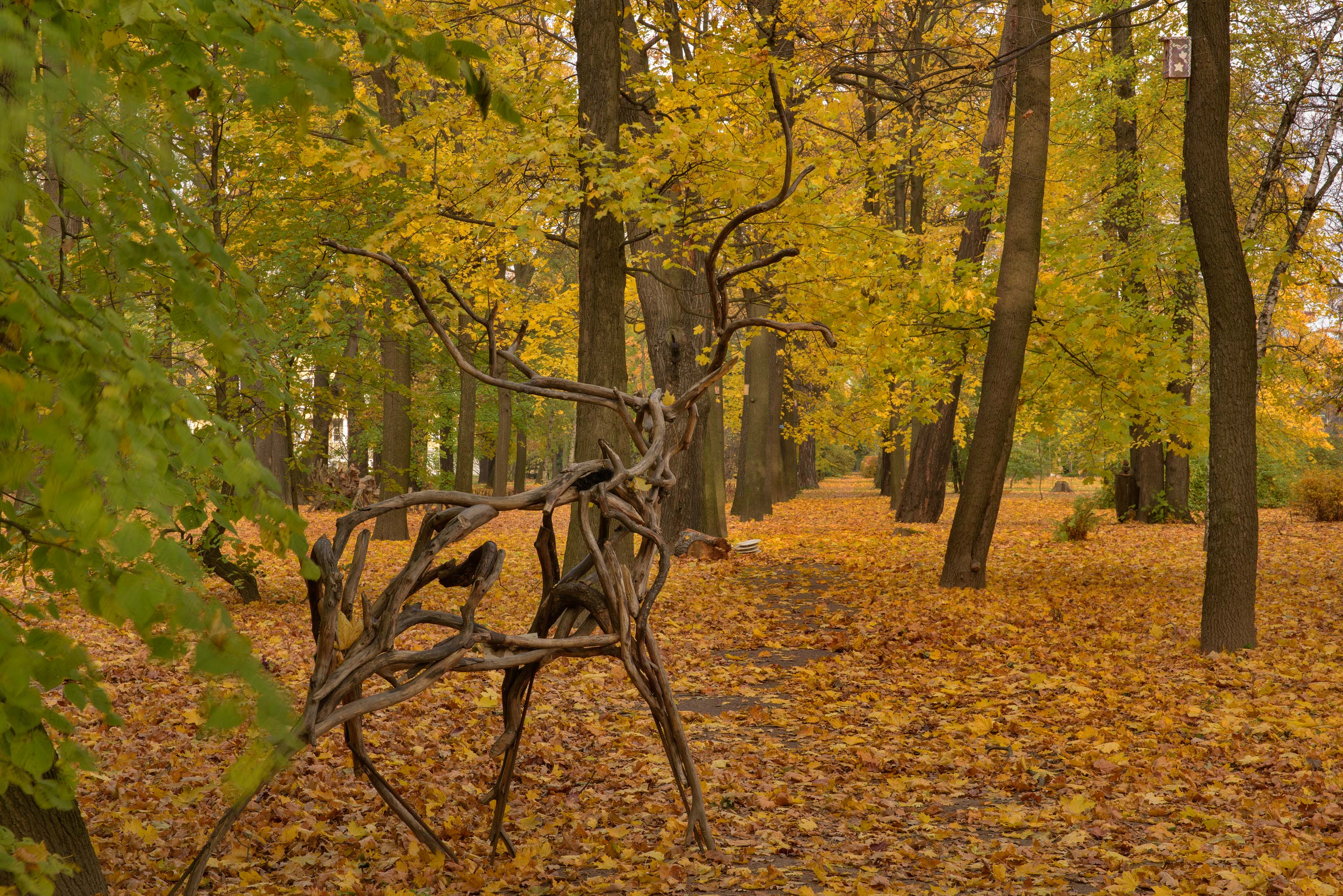 Deer sculpture on a maple alley in Botanic...Institute. St.Petersburg, Russia