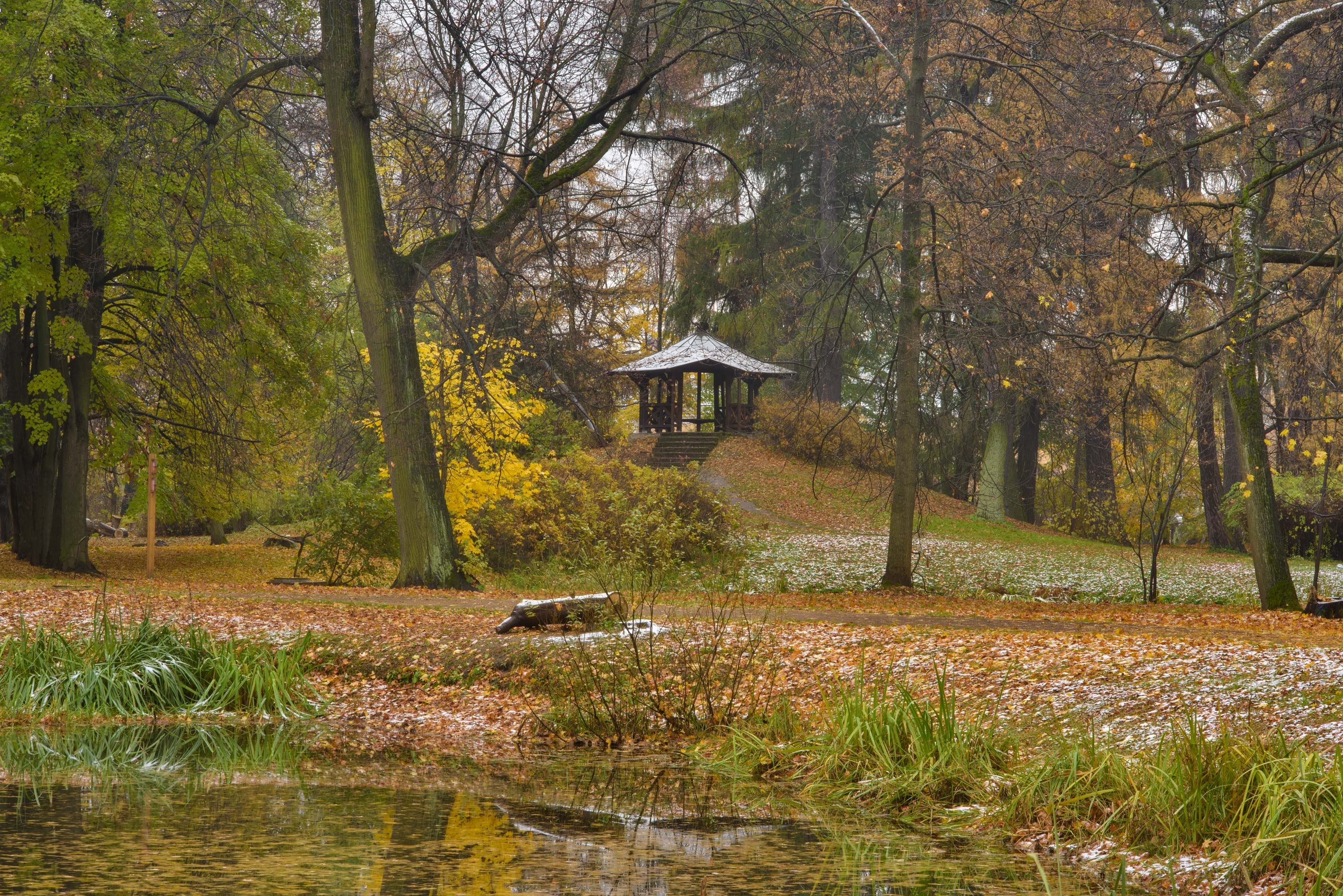 Gazebo and a pond in Botanic Gardens of Komarov Botanical Institute. St.Petersburg, Russia