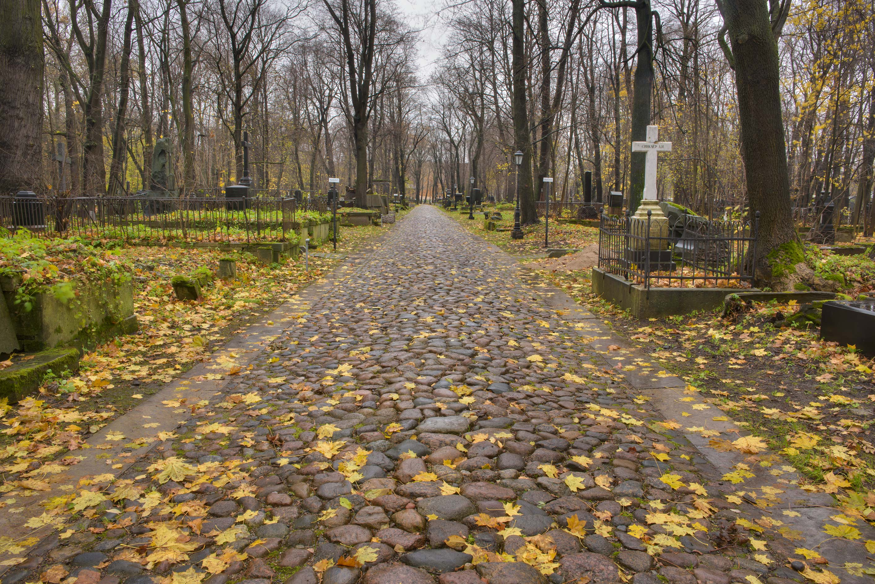 Cobblestone paved road in Smolenskoe Lutheran...Island. St.Petersburg, Russia