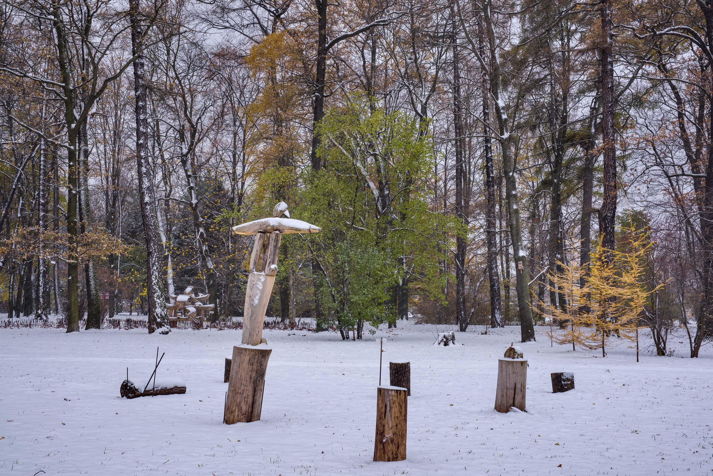 Photo 2006 01 Wooden Sculpture Migrating Birds In Botanic Institute St Petersburg Russia
