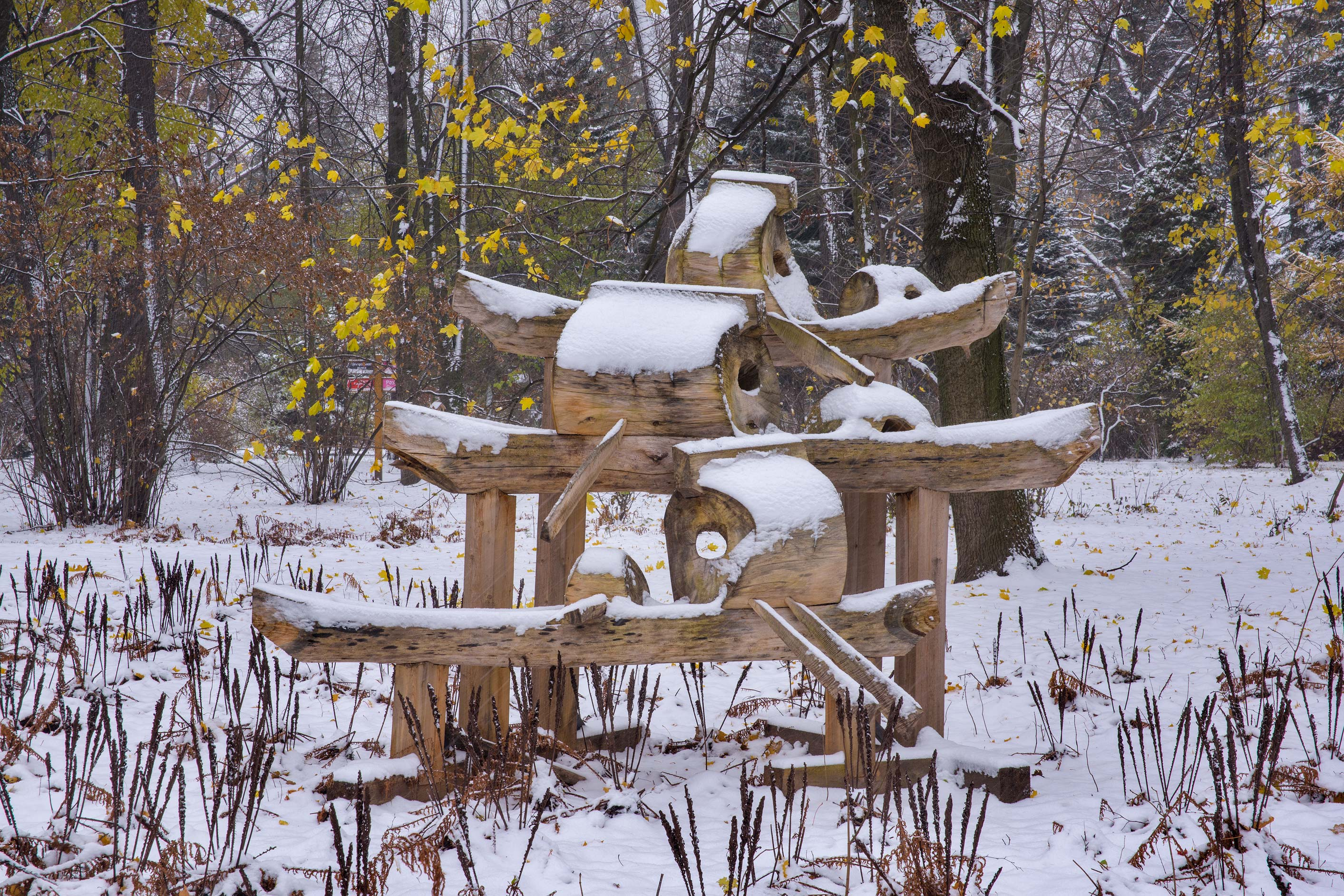 Rowers wooden sculpture in snow in Botanic...Institute. St.Petersburg, Russia
