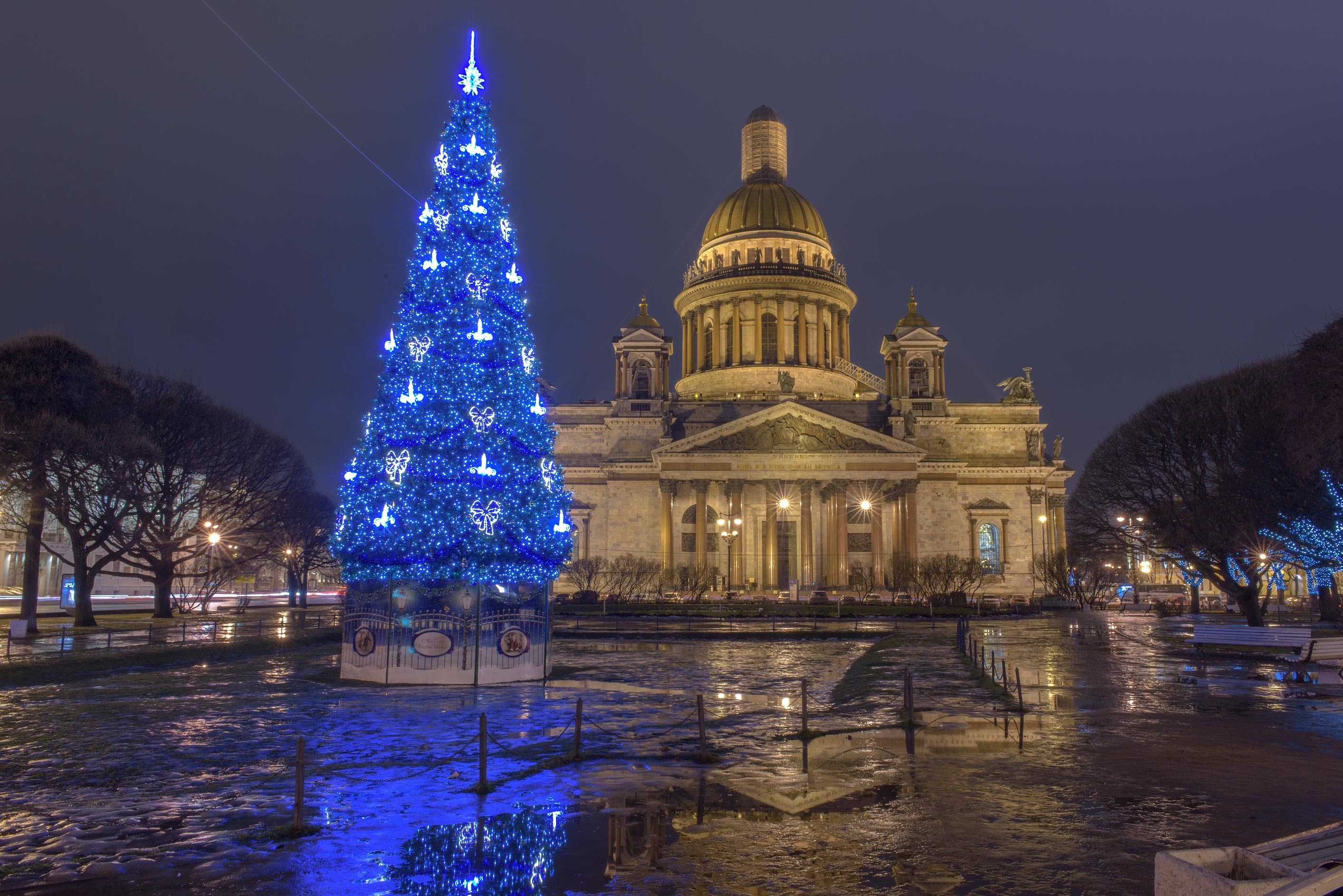 Christmas tree on St. Isaac Square at morning. St.Petersburg, Russia