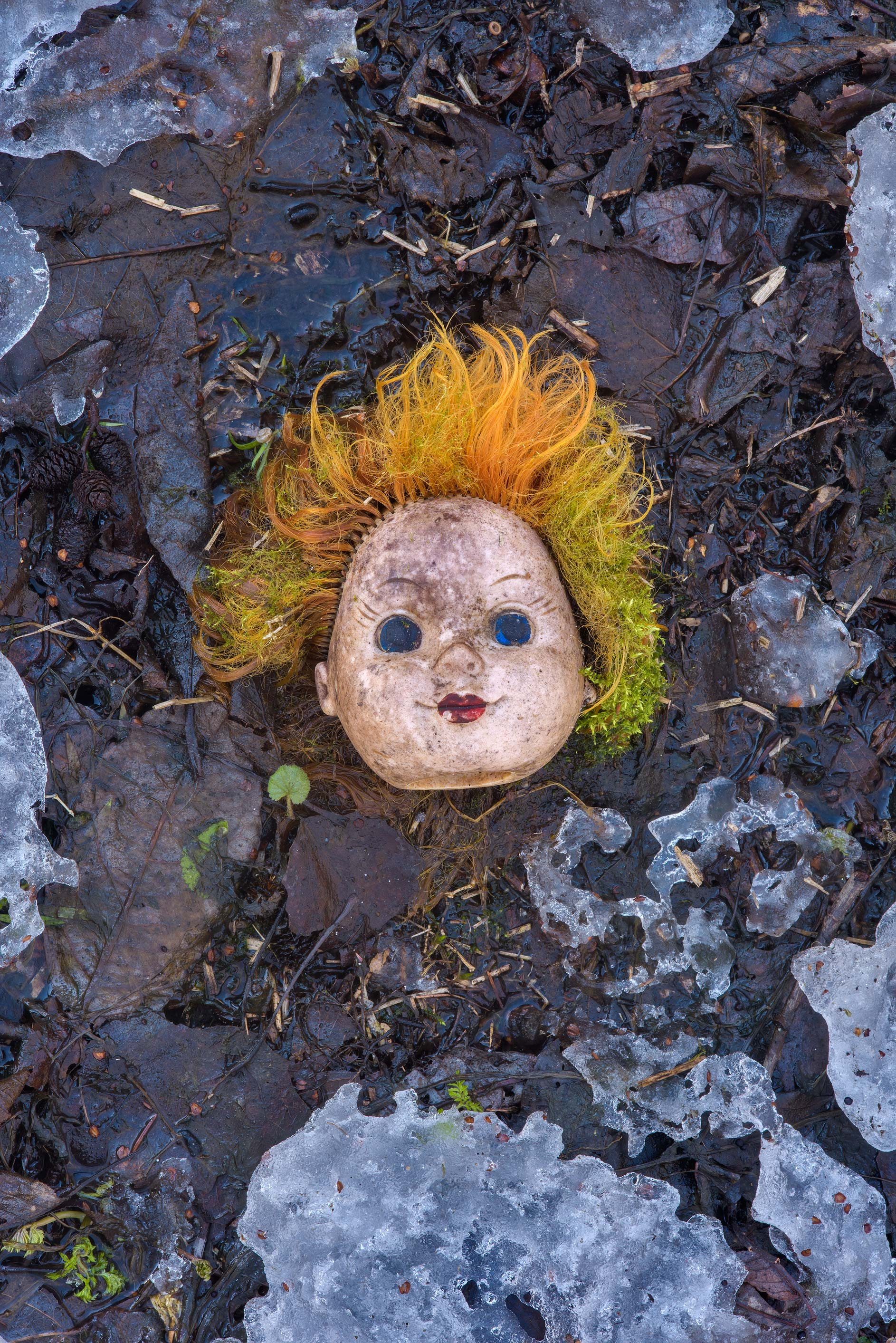 Discarded doll's head on extension of Planernaya...Park. St.Petersburg, Russia