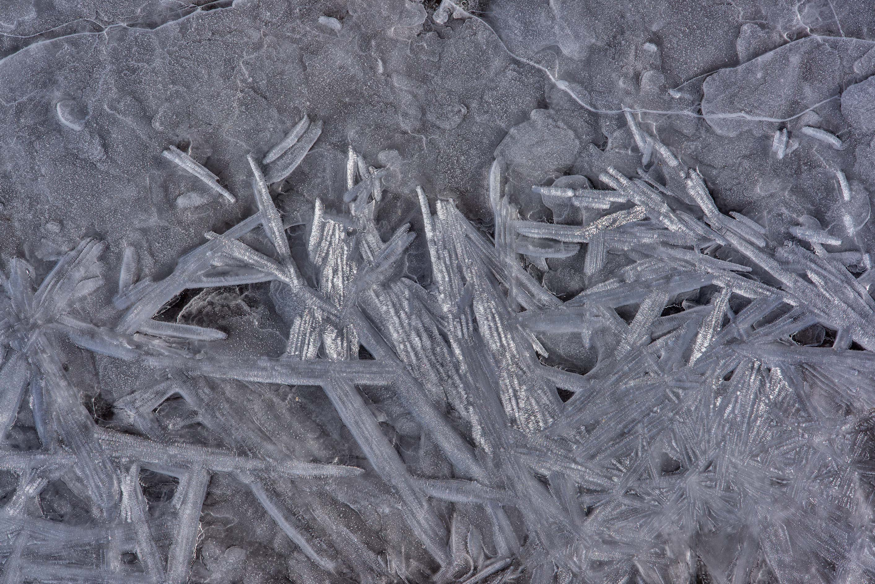 Various shapes of ice crystals on frozen Gulf of...west from St.Petersburg. Russia