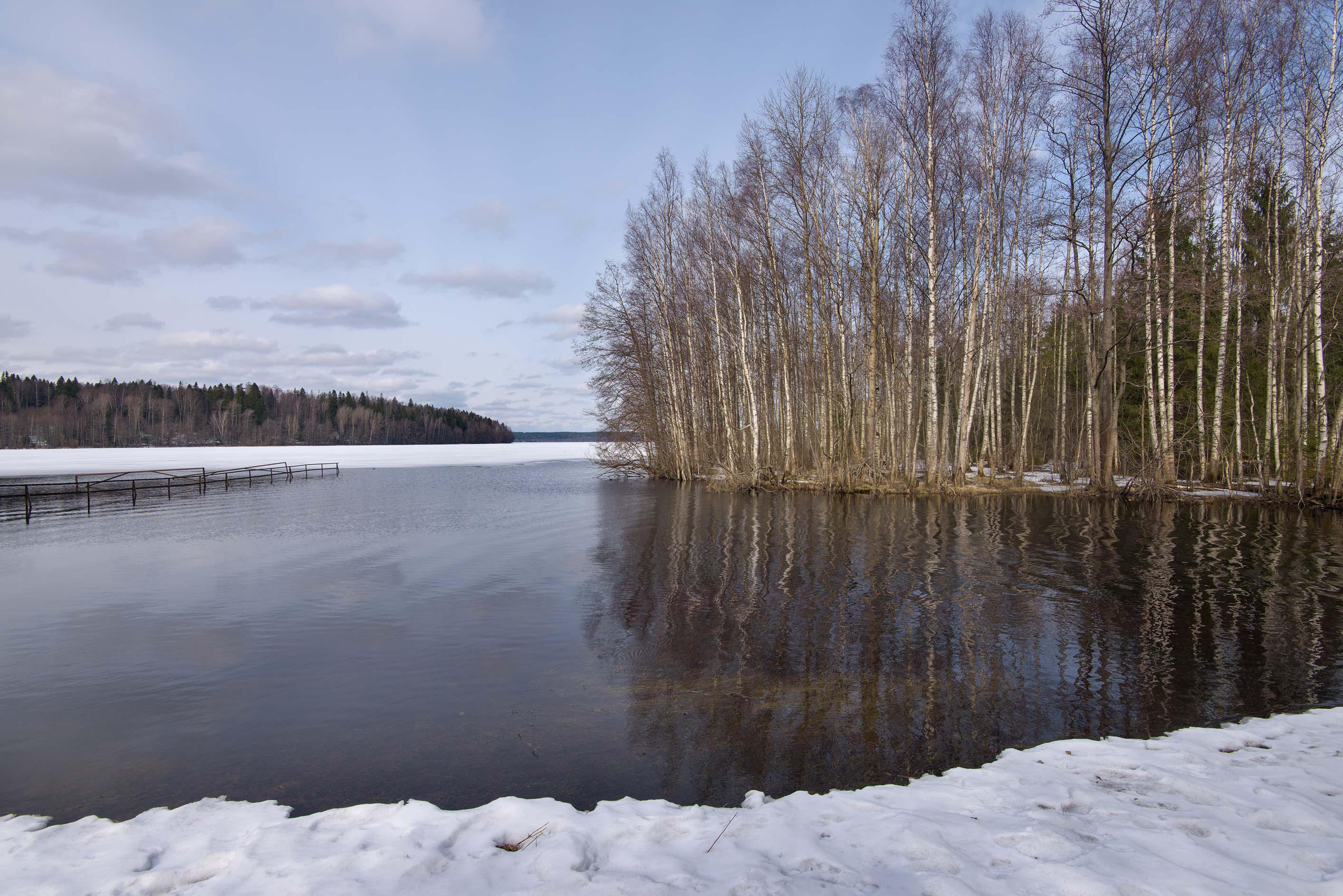Southern end of Gladyshevskoe Lake near...north from St.Petersburg. Russia