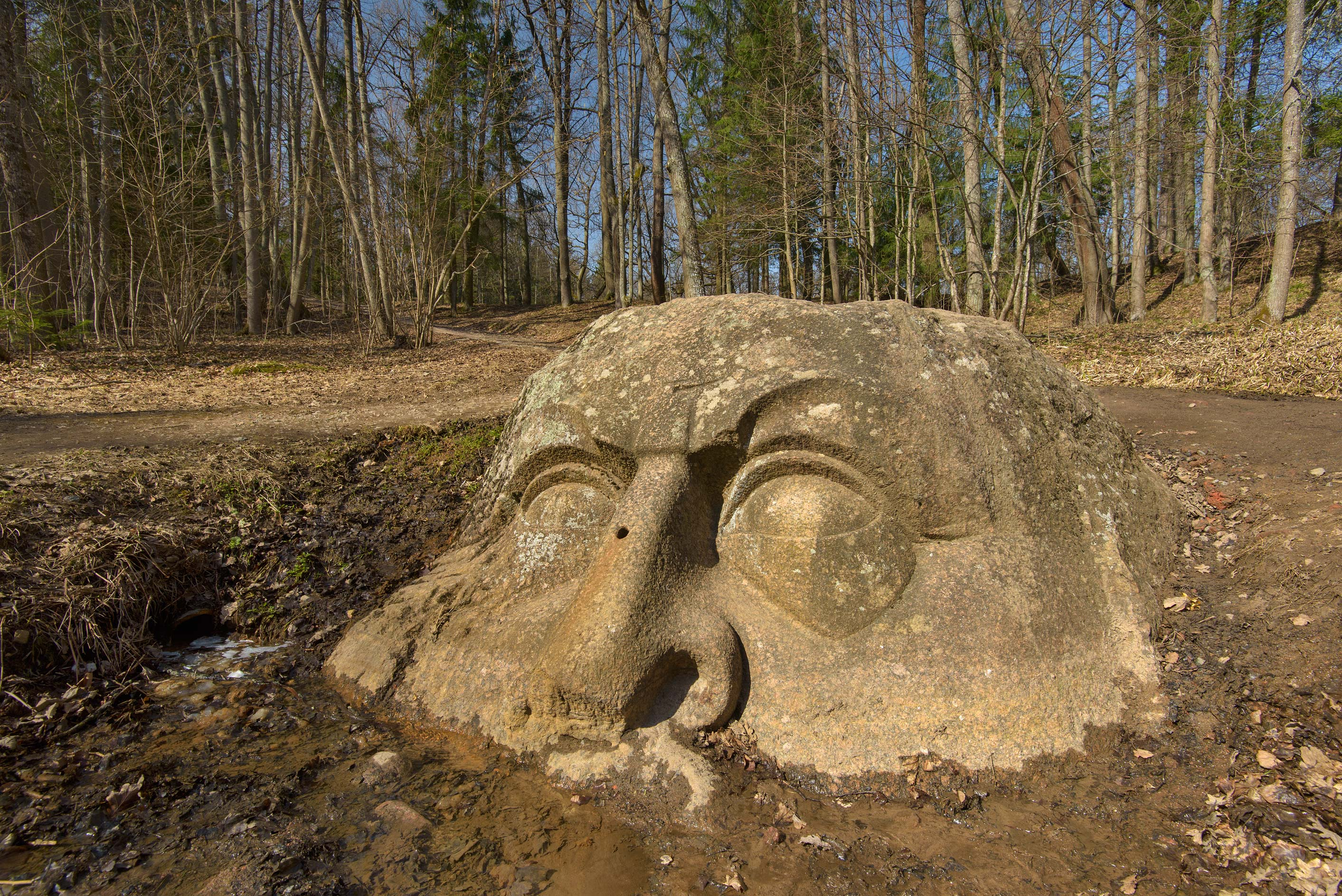 Face of the stone head in Sergievka Park. Old Peterhof, west from St.Petersburg, Russia