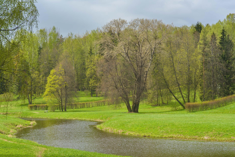 photo 204902 valley of slavyanka river in pavlovsk park