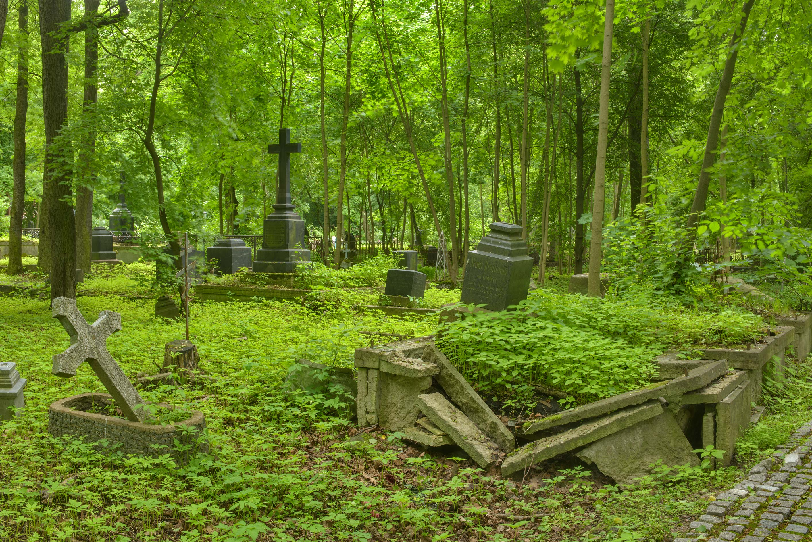 Tombs and weeds in Smolenskoe Cemetery of Vasilievsliy Island. St.Petersburg, Russia