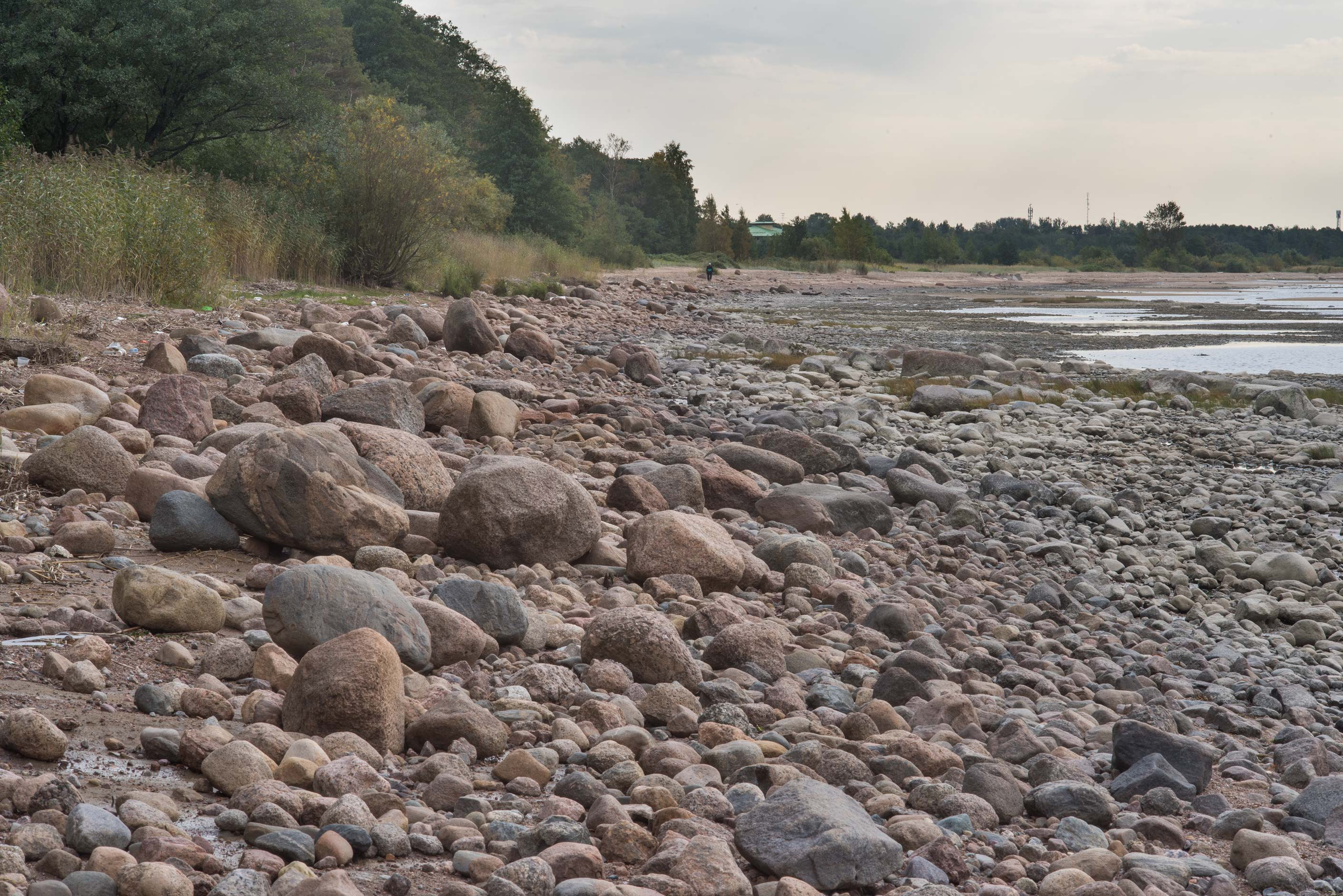 Boulders on a beach of Gulf of Finland in...west from St.Petersburg. Russia
