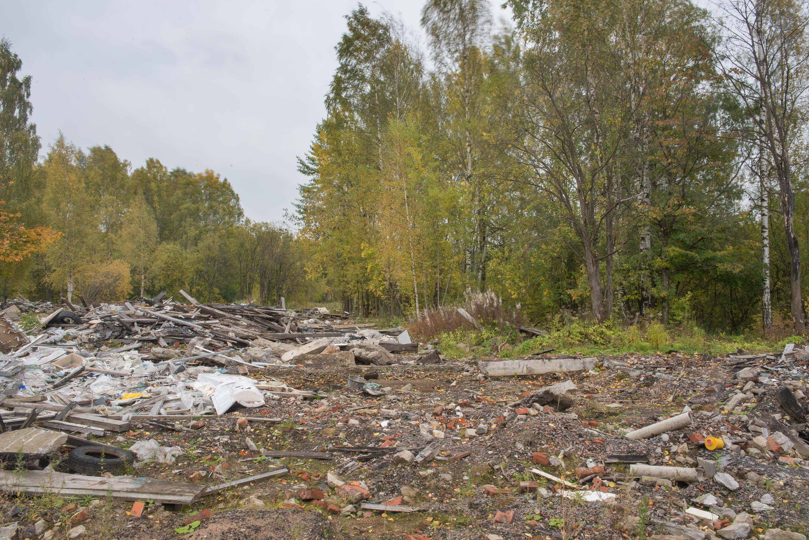 Rubbish in area of former German camps in Sosnovka Park. St.Petersburg, Russia