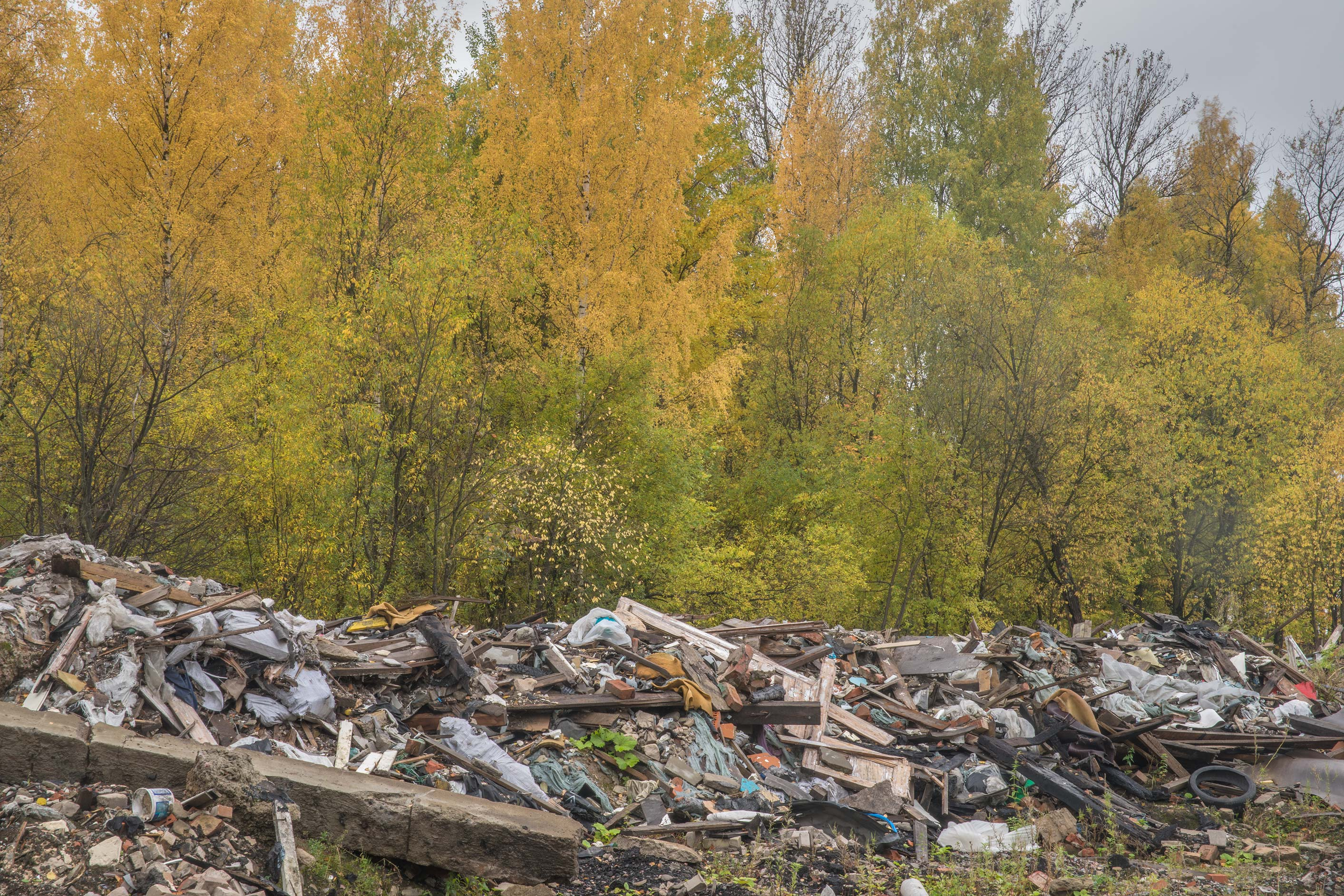 Autumn colors around demolished garages in area...Sosnovka Park. St.Petersburg, Russia