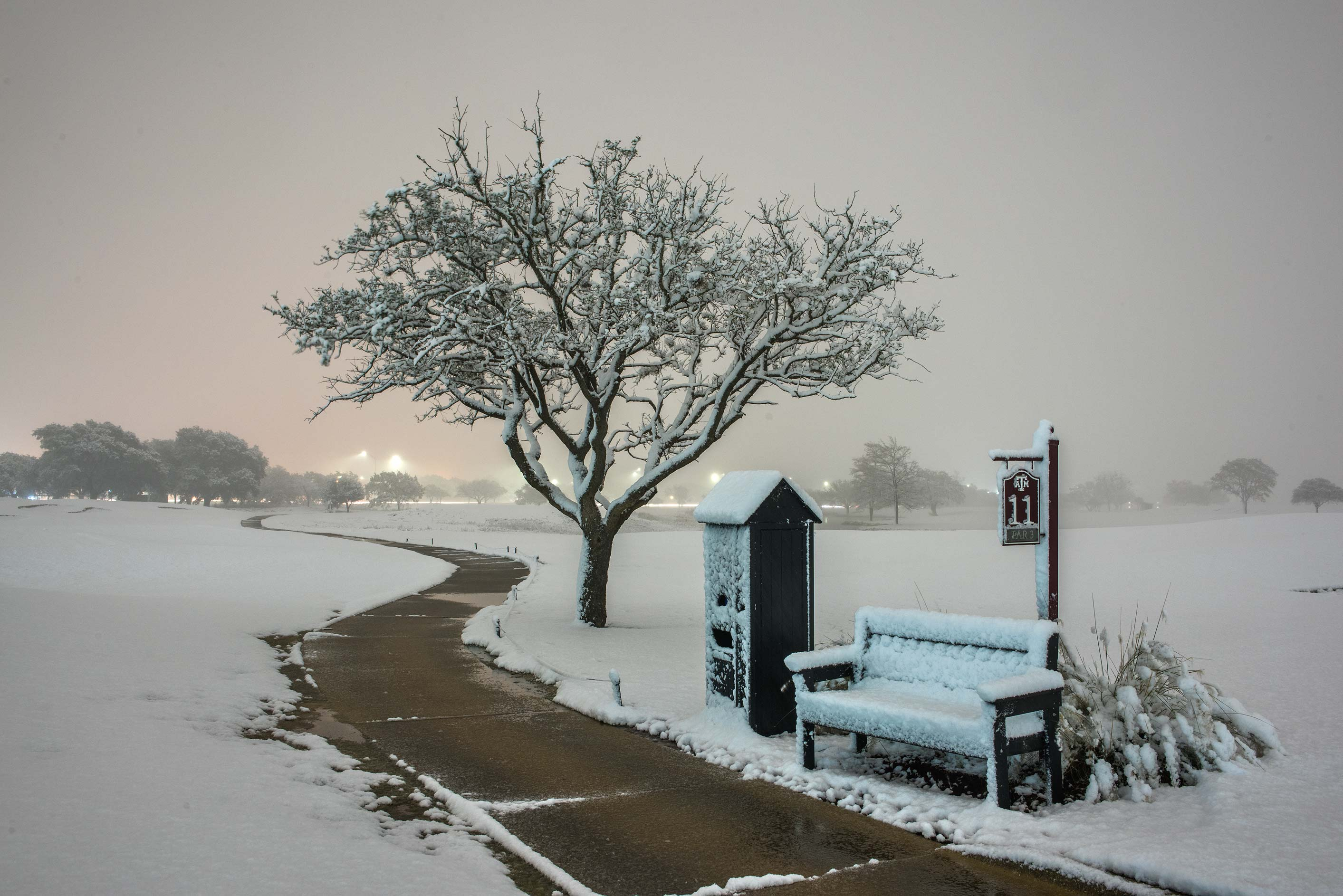 11 Par 3 bench with snow on the university golf course. College Station, Texas