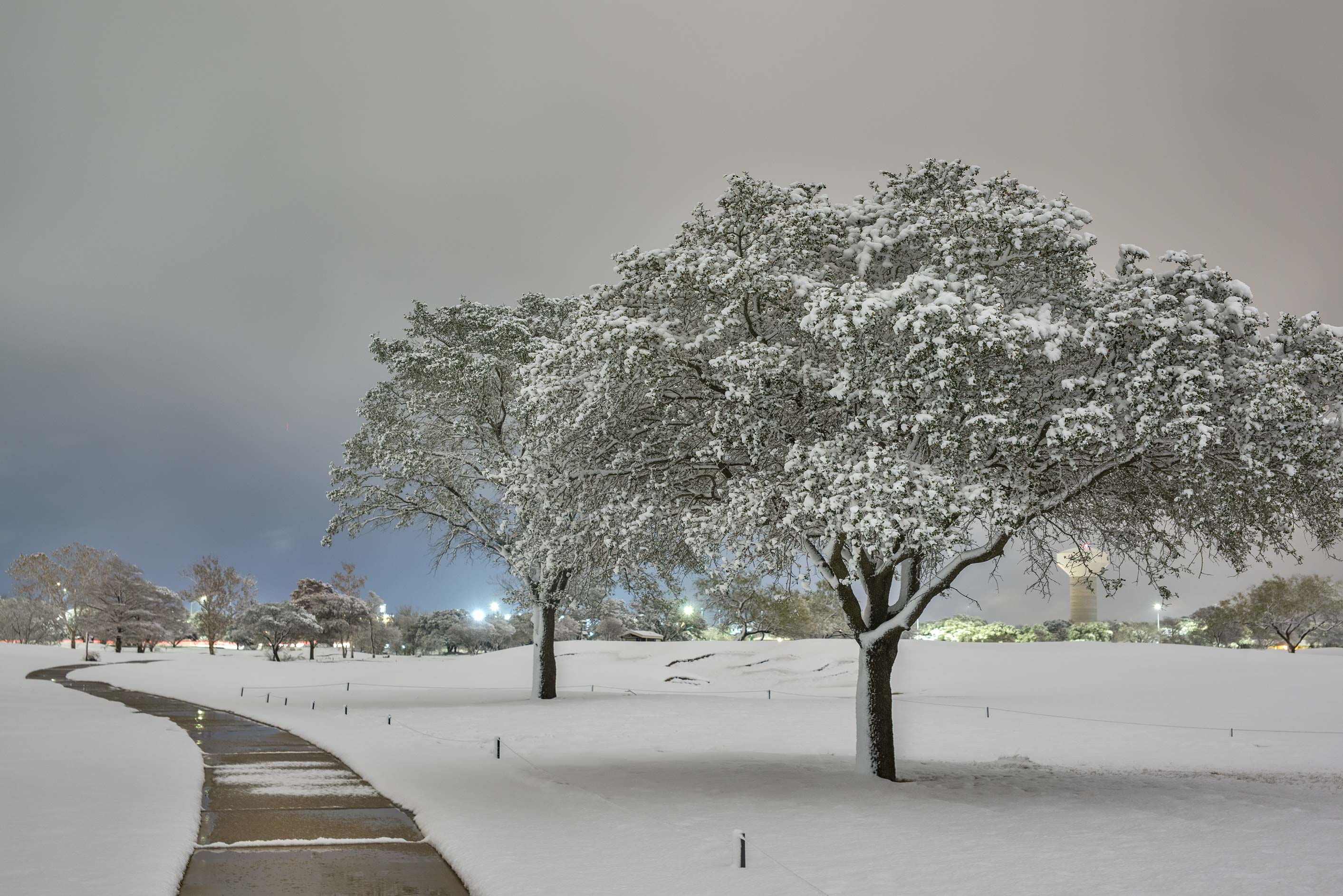 A path with trees in snow on the university golf course. College Station, Texas