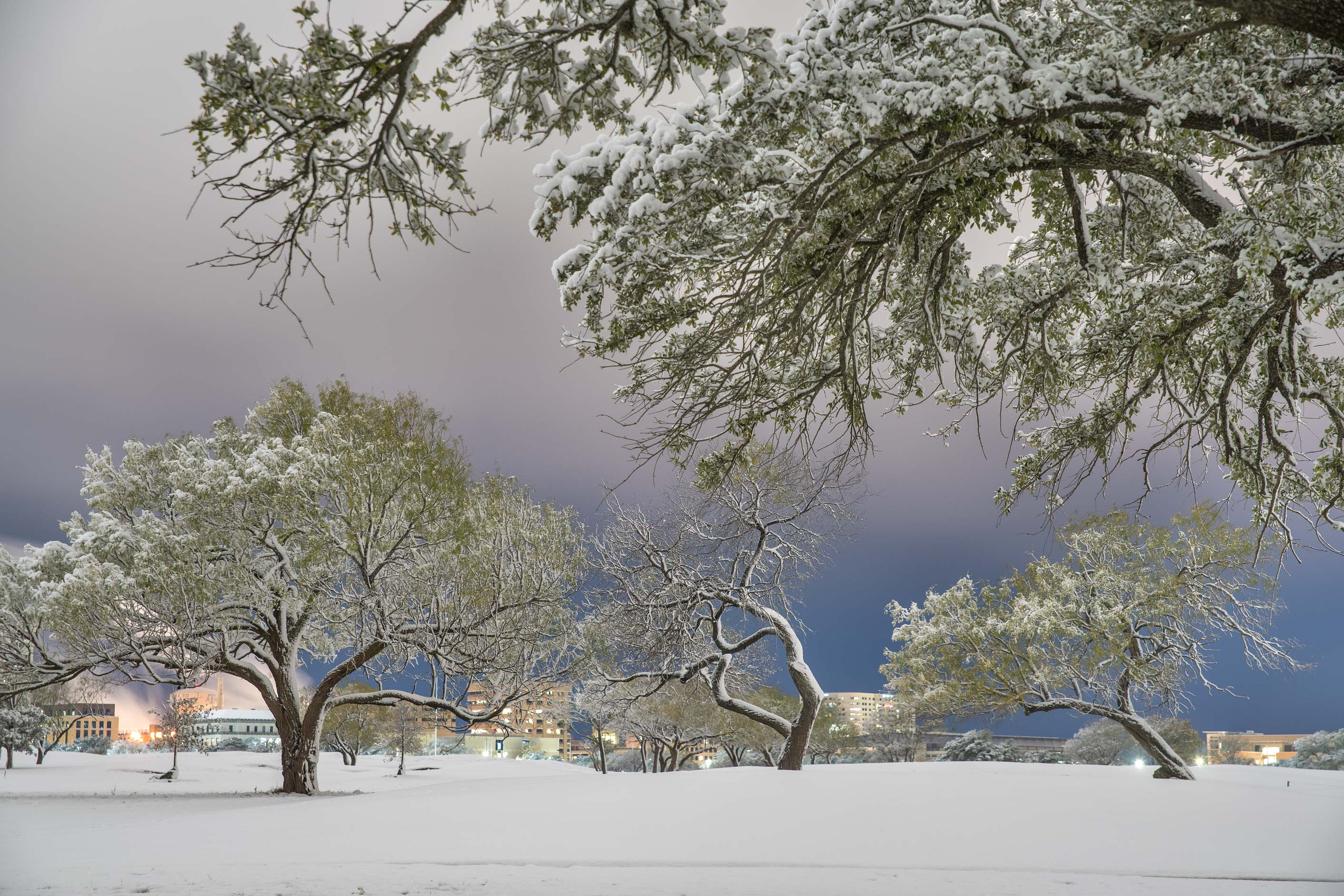 Landscape after a snowfall on the university golf course. College Station, Texas