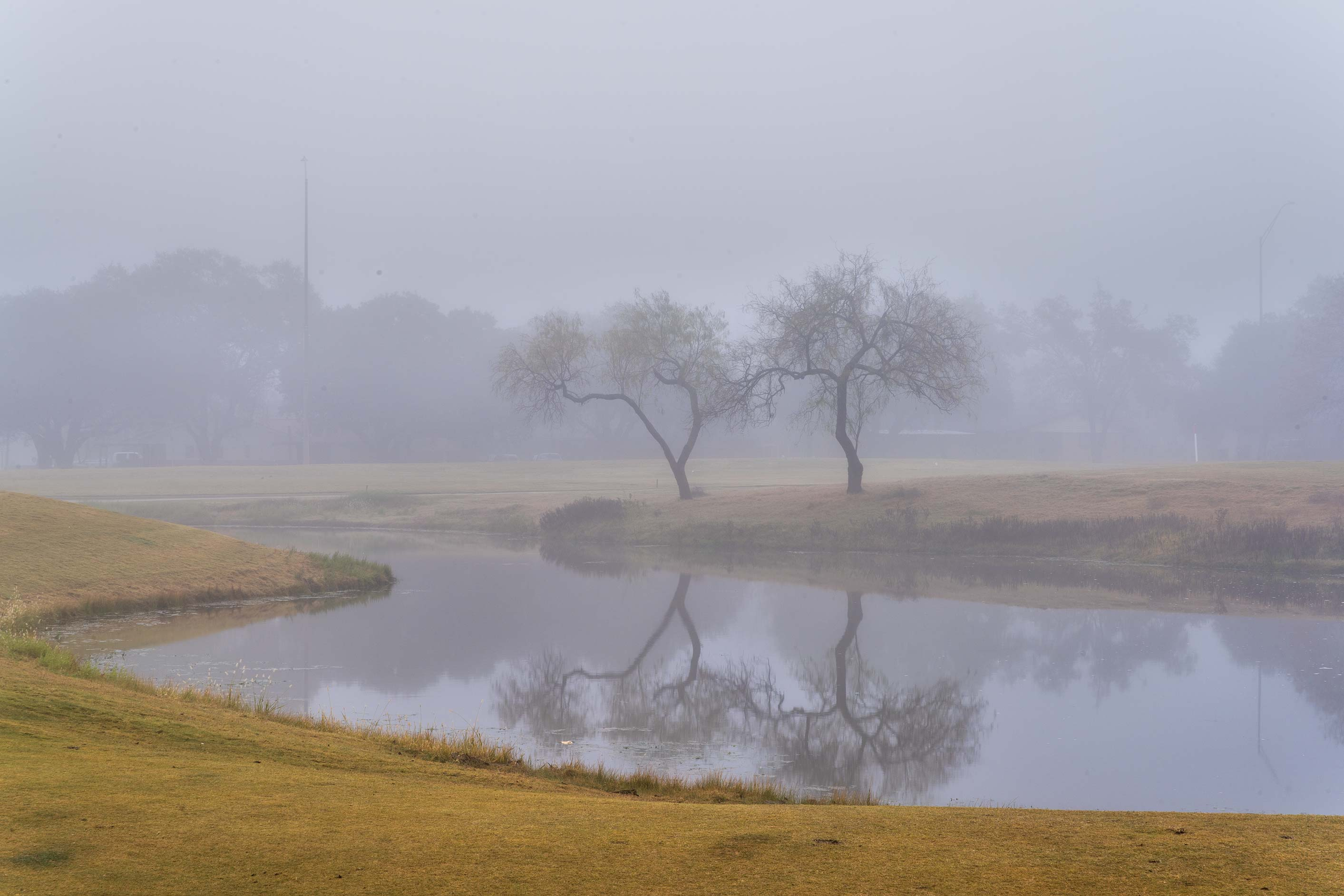 A pond in fog on Texas A&M Campus golf course. College Station, Texas