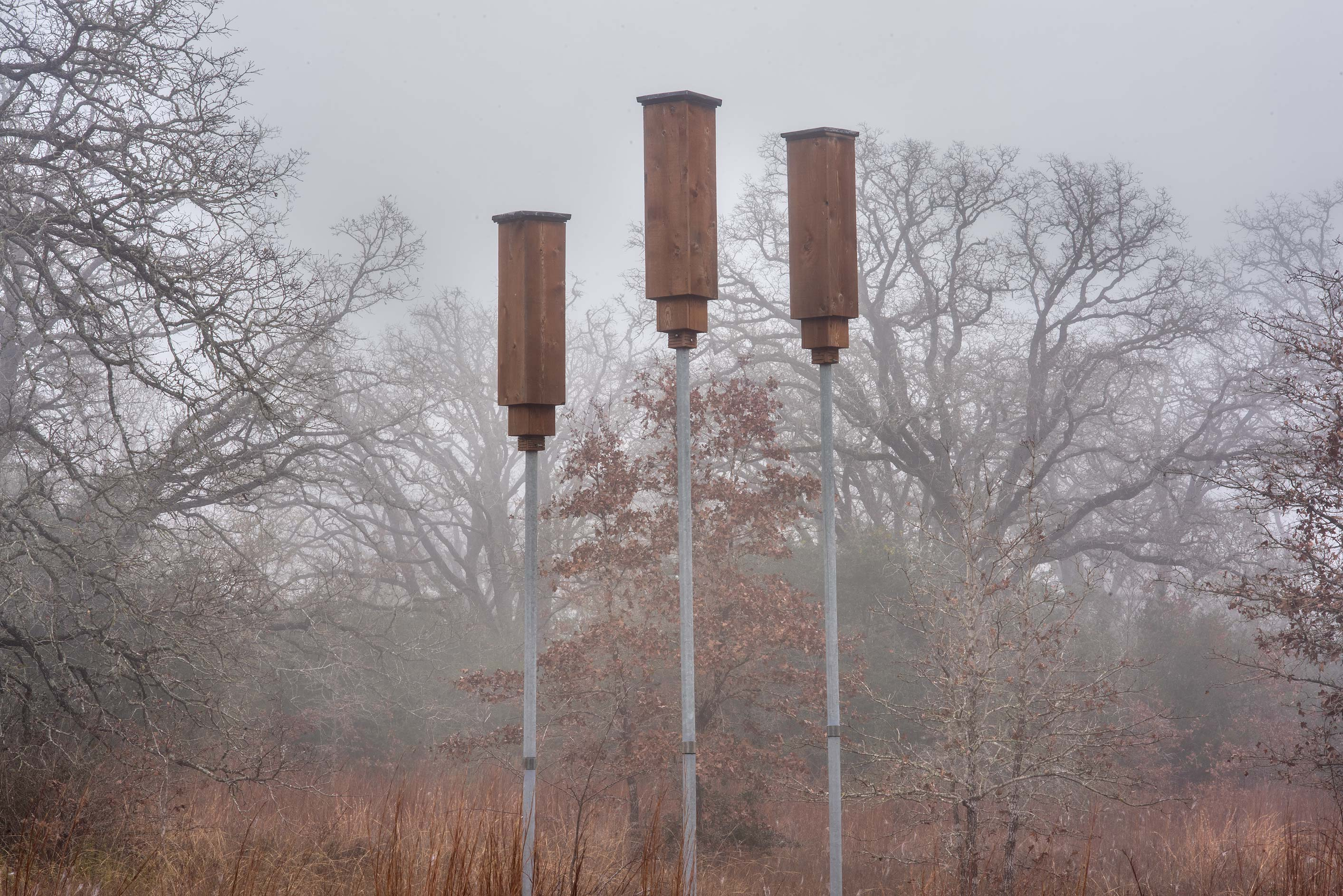 Rocket box bat houses in Lick Creek Park. College Station, Texas