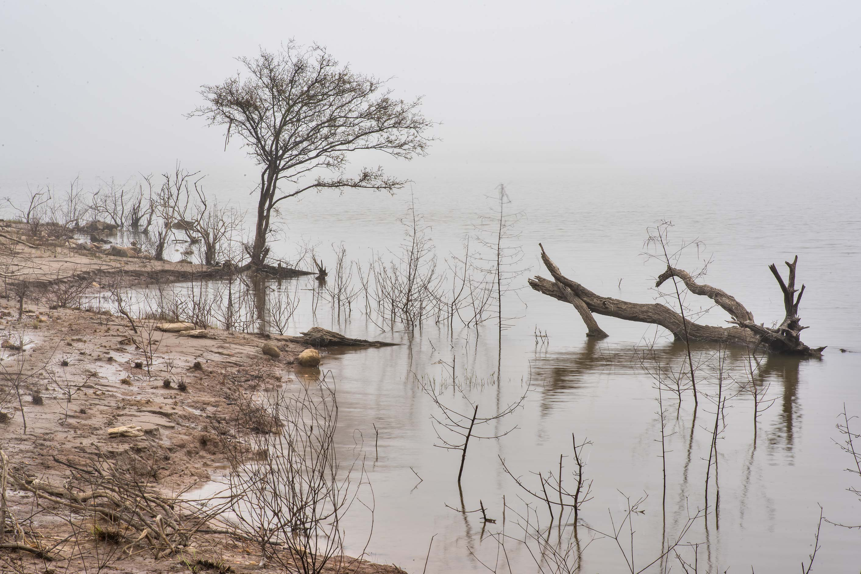 The lake in mist at Lake Somerville Trailway near...of Somerville Lake State Park. Texas