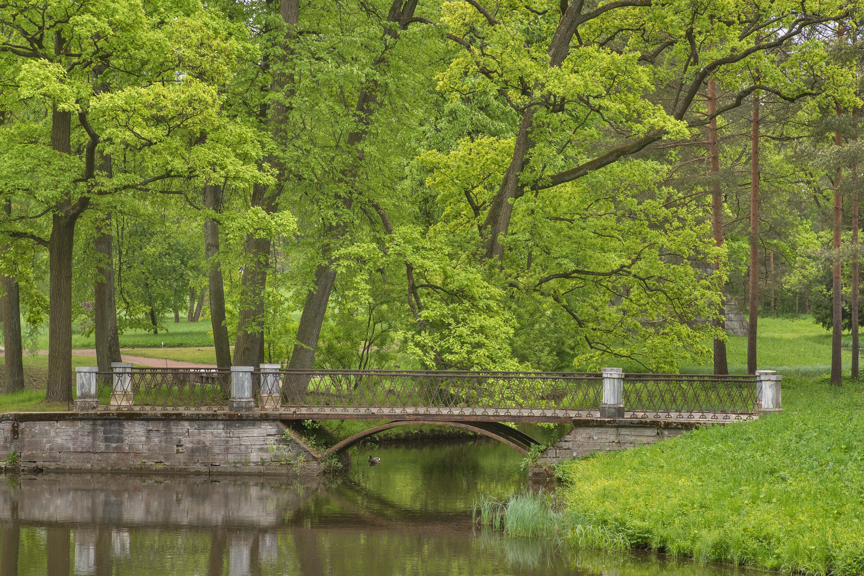 Metal Bridge of Swan Ponds in Catherine Park...Selo) near St.Petersburg, Russia