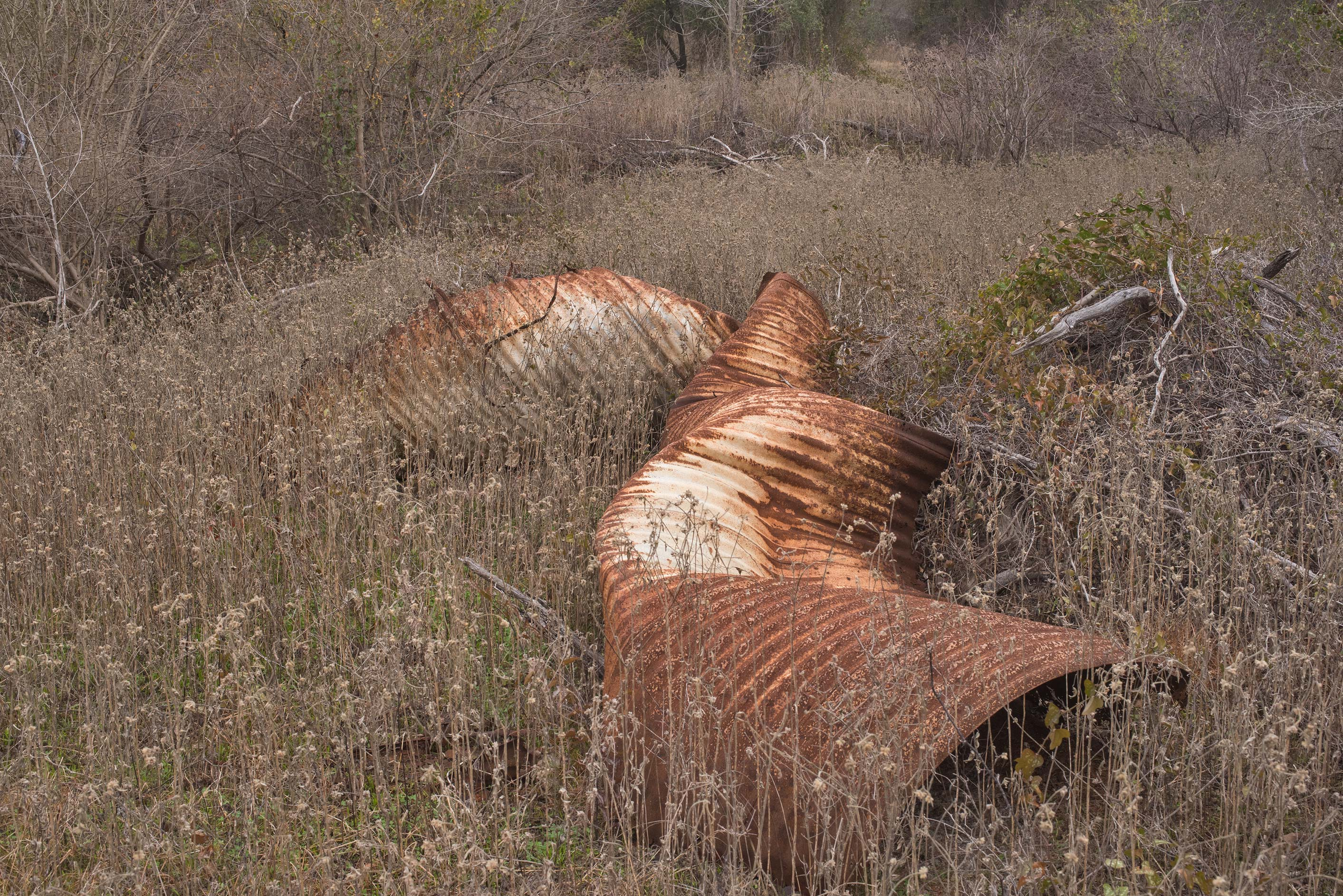 Contorted corrugated steel pipe at Lake...of Somerville Lake State Park. Texas