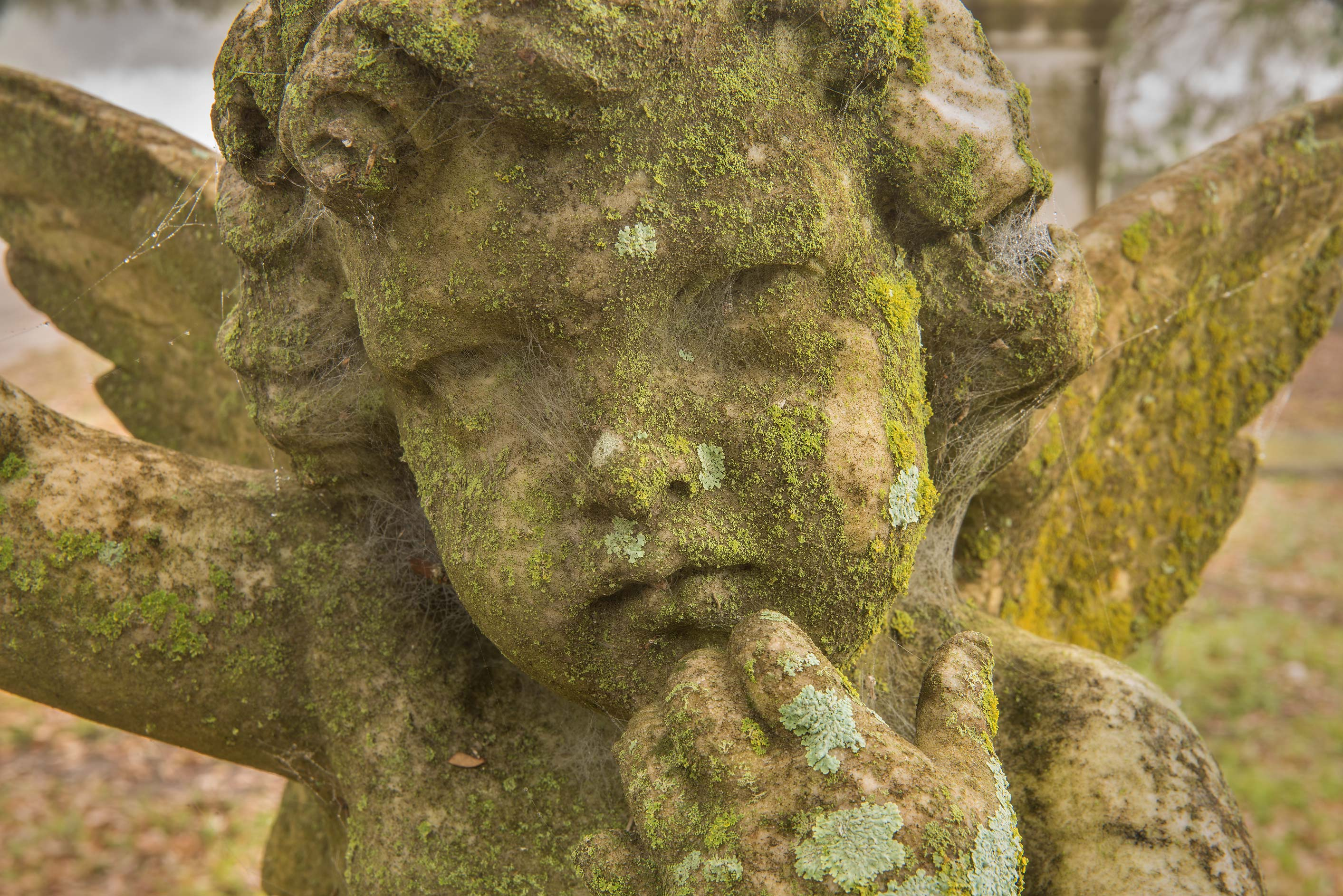 Angel with green lichens in City Cemetery. Bryan, Texas