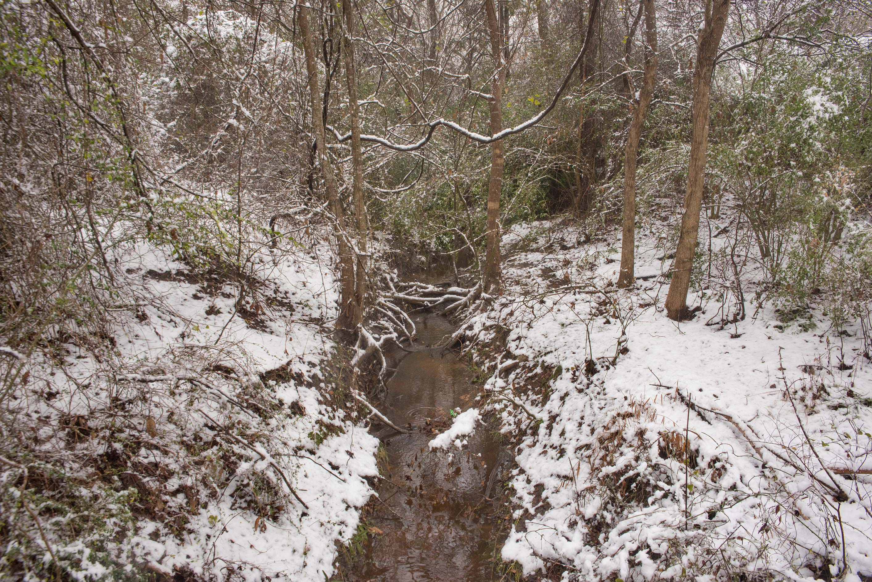 Small creek in snow in Bee Creek Park. College Station, Texas