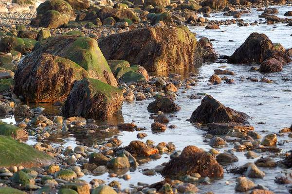 Gooseberry Neck Westport MA Beach