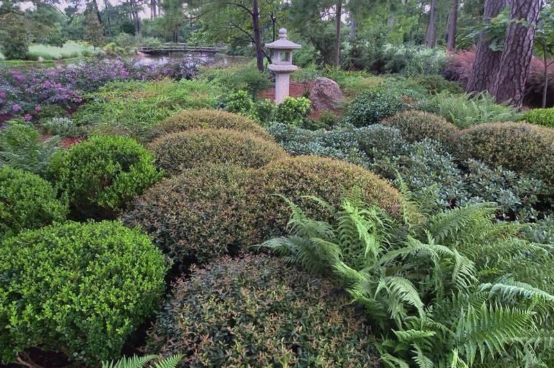 Slideshow 589 01 Japanese Garden In Hermann Park Houston Texas Large Size
