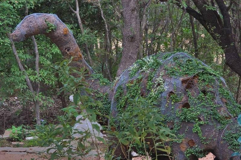 Slideshow 661 08 Topiary Dinosaur In Zilker Botanical Gardens
