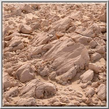 Photo 1175-06: Effects of wind abrasion on limestone rocks ...