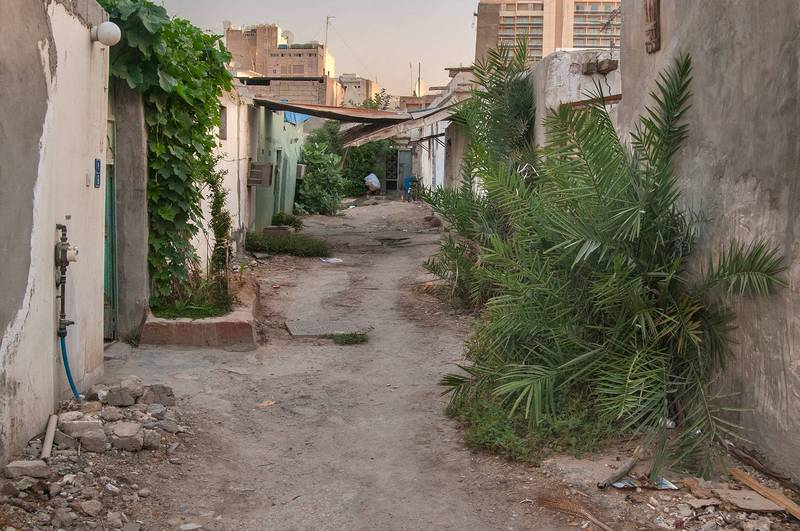 Alley (sikka) with palms trees (Phoenix dactylifera) in Musheirib area. Doha, Qatar, May 11, 2013