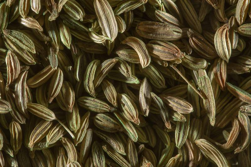 Fennel seeds from India (Foeniculum vulgare) for sale in spice section in Souq Waqif (Old Market). Doha, Qatar, December 23, 2014