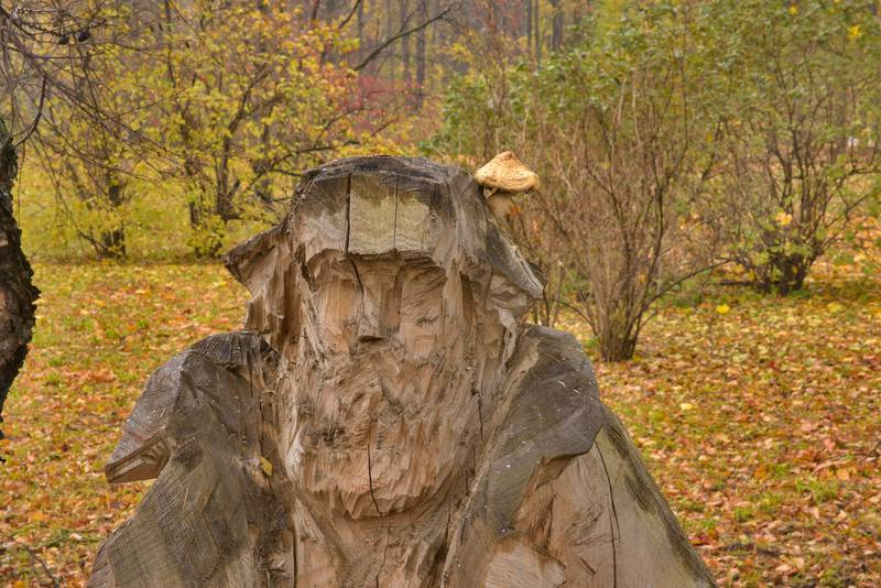 Spring Day (Homeless) wooden sculpture with a wood-rotting scalycap mushroom Hemipholiota populnea (Pholiota destruens) in Botanic Gardens of Komarov Botanical Institute. Saint Petersburg, Russia, October 26, 2016