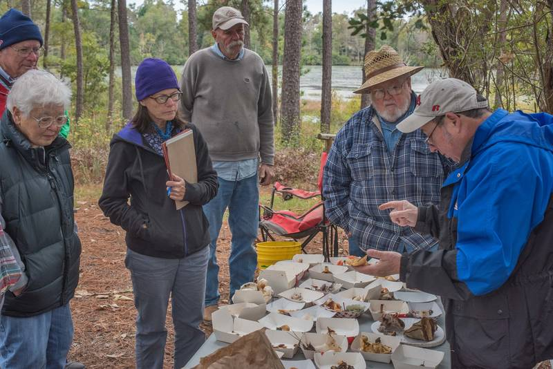 Sorting collected mushrooms after the walk of Gulf States Mycological Society in Watson Rare Native Plant Preserve. Warren, Texas, November 10, 2018