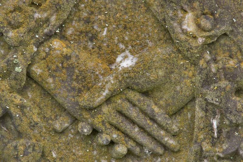 "Sidewalk firedot lichen (<B>Xanthocarpia feracissima</B>, Caloplaca feracissima) on handshake symbol on a tomb in City Cemetery. Bryan, Texas, <A HREF=""../date-en/2018-12-08.htm"">December 8, 2018</A>"